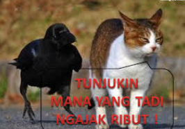 gambar binatang lucu buat komentar facebook