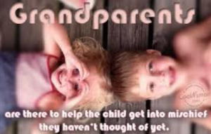 jokes grandchildren funny grandchildren quotes