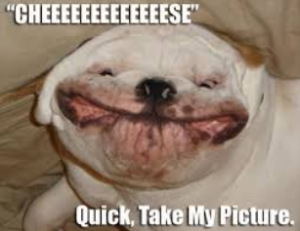 Funny Pictures With Captions