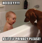 Funny Pictures Images Baby And Animal With Captions On Facebook Status Make You Laught