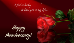 Anniversary Wishes for Sister Messages Quotes Poems Greetings