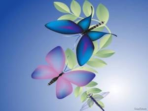 ButterflyBeautifulWallpaper