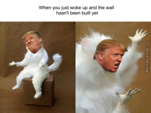 donald trump meme generator
