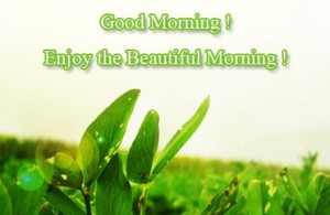 sweet image of good morning enjoy